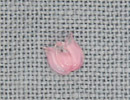 MH12157 - Very Small Tulip Marbled Rose